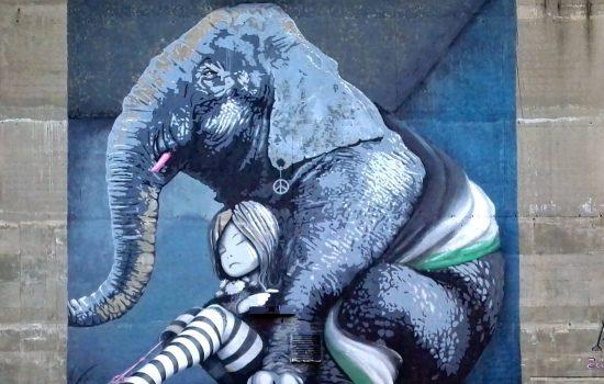 Elephant in the Room - Kristiansand juni 2017